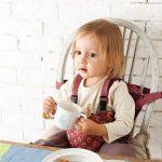 赤ちゃんとの外食で必須のチェアベルトの評価!安いと色落ちするけど便利過ぎる理由!